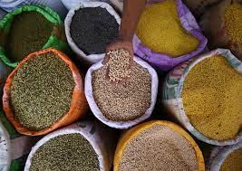 COPAGRI: FOOD SYSTEM SUMMIT, PIÙ AGRICOLTURA CONTRO IL CLIMATE CHANGE E L'INSICUREZZA ALIMENTARE
