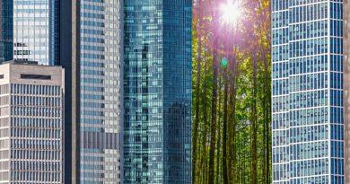 Green Bond Brief Revisione strategica BCE: il cambiamento climatico nella conduzione della politica monetaria