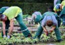 COPAGRI: DONNE RURALI, SONO QUASI LA METÀ DELLA FORZA LAVORO AGRICOLA